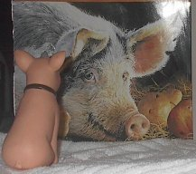 The Killer Piglet