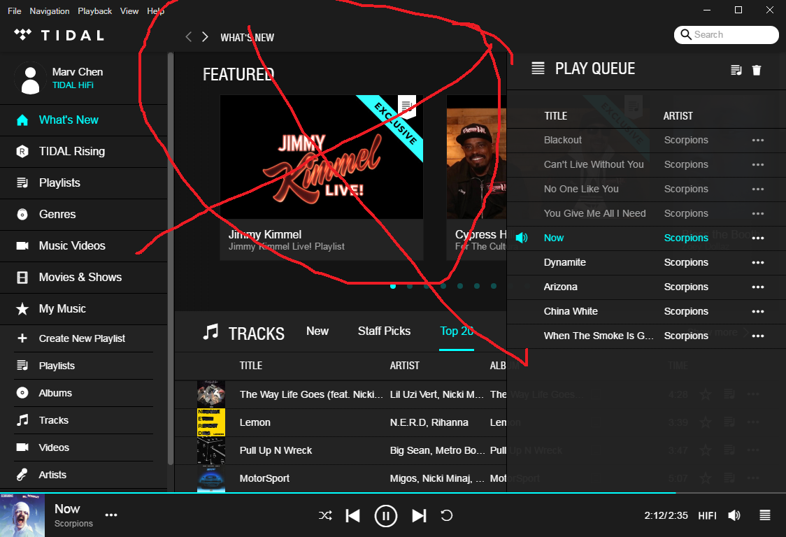 Tidal UI question | Super Best Audio Friends